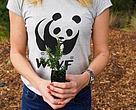 Woman in WWF tee-shirt holding plant