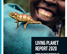 Cover of the Living Planet Report 2020