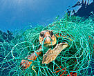 Loggerhead turtle (Caretta caretta) trapped in a drifting abandoned net, Mediterranean Sea.