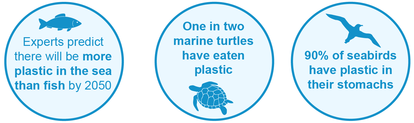 Plastic pollution facts